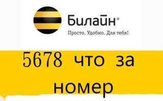 Билайн короткий номер 5678