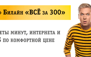 Билайн все за 300 роуминг по россии