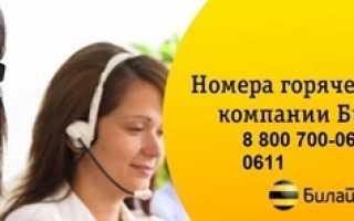 Билайн городской телефон службы поддержки